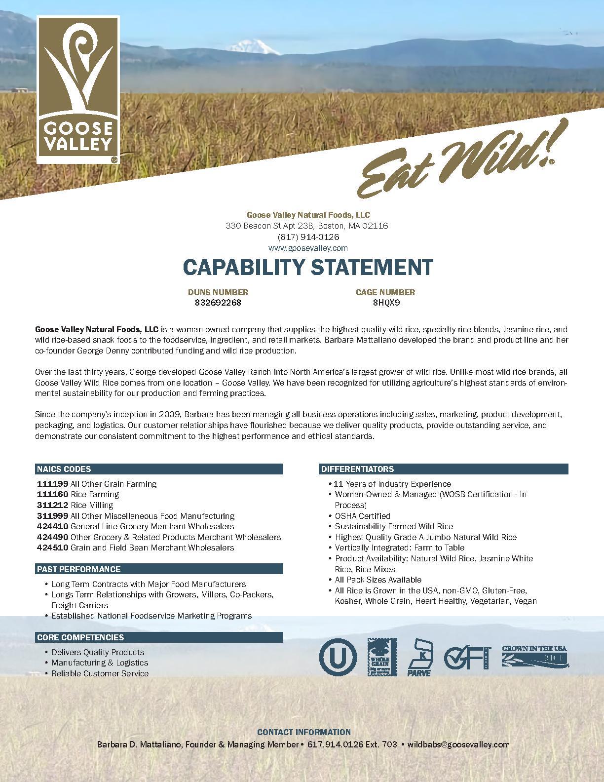 Gvnf capability statement 062920