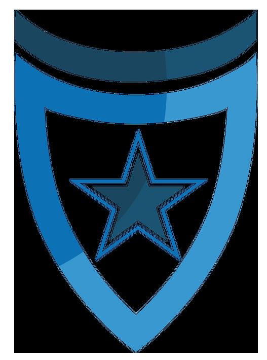 Premium security service logo2